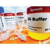 Gel DNA Extraction (2)