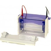 Vertical Electrophoresis Systems (3)
